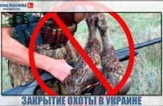 Закрытие охоты на Украине в 2014 году.Будет мораторий или нет?