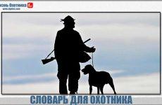 Словарь охотника продолжается!