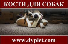 Кости для собак