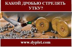 Какой дробью стрелять утку?