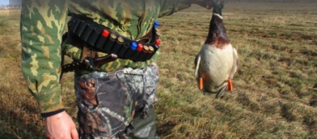 Правила осенней охоты на уток