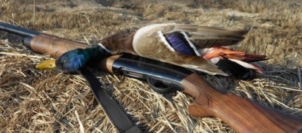 Ружьё для охоты на уток