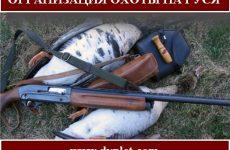 Организация охоты на гуся
