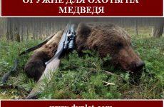 Оружие для охоты на медведя