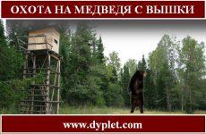 Охота на медведя с вышки