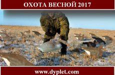 Охота весной 2017. Дата открытия и сроки