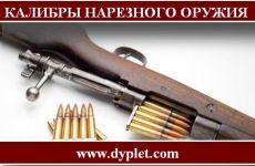 Калибры нарезного охотничьего оружия. Самые основные и эффективные калибры