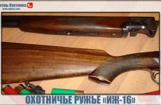 Охотничье ружьё ИЖ-16. Характеристика и происхождение модели