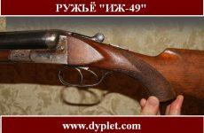 Ружьё ИЖ-49. Характеристика и история возникновения