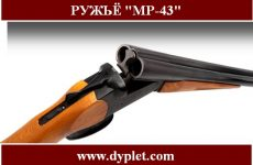 Ружьё МР-43. Характеристика гладкоствольного ружья