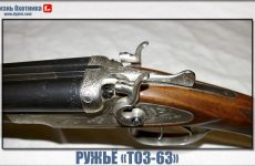 Ружьё ТОЗ-63. Характеристика бессмертной двустволки