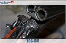 ТОЗ-БМ. Характеристика народного ружья для охоты