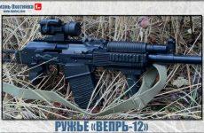 Ружьё «Вепрь-12». Обзор и характеристика