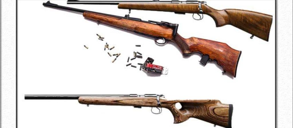 Охота и мелкокалиберная винтовка. Совместимы ли эти вещи?